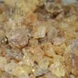 Kopal manila 100 g