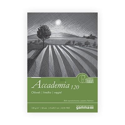 Blok Accademia firmy Gamma 120g 50 ark. A4